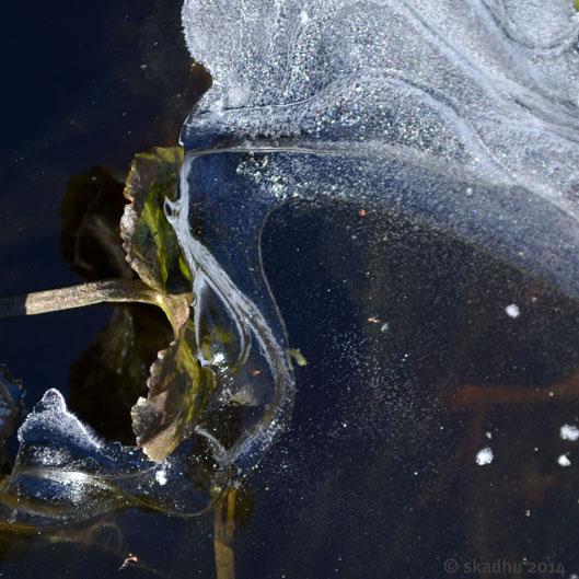 ice edge 3