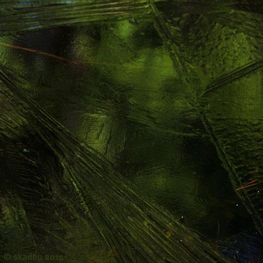ice reflecting green of cedar 1